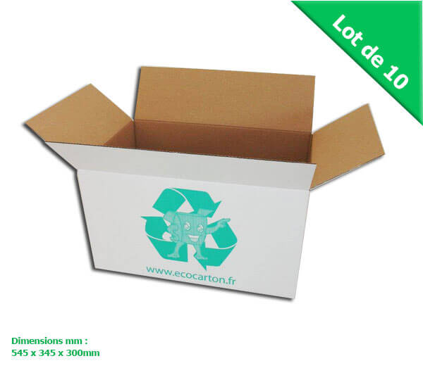 -LOT DE 10 GRANDS CARTONS DEMENAGEMENT (BLANC) MULTI - USAGES